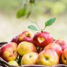 Pomme d'amour - Rencontres Sérieuses Savoie